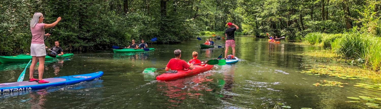 Raddusch, Leipe, Lehde - eine wunderbare Stand Up Paddle-Tour im Spreewald